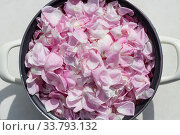 Купить «Casserole full of pink rose petals», фото № 33793132, снято 10 мая 2020 г. (c) ok_fotoday / Фотобанк Лори