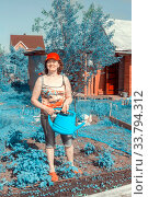 Купить «Beautiful mature woman watering strawberries from a watering can on a summer sunny day.», фото № 33794312, снято 23 мая 2015 г. (c) Акиньшин Владимир / Фотобанк Лори