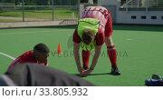 Купить «Hockey players stretching before a game», видеоролик № 33805932, снято 18 ноября 2019 г. (c) Wavebreak Media / Фотобанк Лори