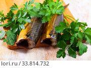 Купить «Sliced appetizing smoked mackerel with parsley closeup», фото № 33814732, снято 23 мая 2020 г. (c) Яков Филимонов / Фотобанк Лори