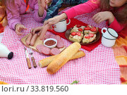 Купить «Picnic in the park. Sausages and sandwiches with sausage on a plaid», фото № 33819560, снято 20 мая 2020 г. (c) Марина Володько / Фотобанк Лори