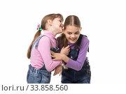 Купить «Девочка кусает своей сестре ухо радостно веселясь», фото № 33858560, снято 15 мая 2020 г. (c) Иванов Алексей / Фотобанк Лори