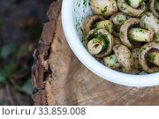 Купить «in a bowl raw mushrooms champignons in a marinade with herbs, dill in a rustic natural form. View from above», фото № 33859008, снято 13 августа 2018 г. (c) Tetiana Chugunova / Фотобанк Лори