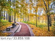 Купить «Дорожка в парке Царицыно и осенние деревья», фото № 33859108, снято 15 октября 2018 г. (c) Baturina Yuliya / Фотобанк Лори