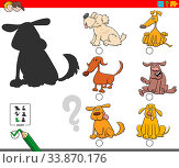 Cartoon Illustration of Finding the Right Shadow Educational Game for Children with Funny Dog Characters. Стоковое фото, фотограф Zoonar.com/Igor Zakowski / easy Fotostock / Фотобанк Лори