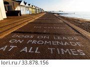 England, Suffolk, Southwold, Southwold Beach, No Dogs on Beach Sign. Стоковое фото, фотограф Steve Vidler / age Fotostock / Фотобанк Лори