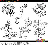 Black and White Cartoon Illustration of Funny Insects Animal Characters Set Coloring Book Page. Стоковое фото, фотограф Zoonar.com/Igor Zakowski / easy Fotostock / Фотобанк Лори
