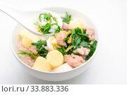 Купить «Boiled rice with pork, ivy gourd leaves and soft tofu», фото № 33883336, снято 4 июля 2020 г. (c) easy Fotostock / Фотобанк Лори