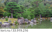 Купить «Video of pine trees on the islet on the Kyoko-chi pond in the garden of Kinkaku-ji temple. Kyoto», видеоролик № 33919216, снято 25 апреля 2020 г. (c) Serg Zastavkin / Фотобанк Лори