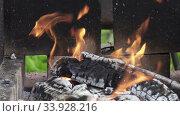 Купить «Wooden logs burning in a brazier in street,Wooden shelves burn in street mangal on territory of country house, preparation of coals for preparation of barbecues on open fire,BBQ,», видеоролик № 33928216, снято 3 июня 2020 г. (c) Куликов Константин / Фотобанк Лори