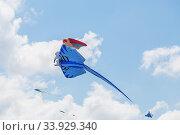 Kites flying in a blue sky. Стоковое фото, фотограф Nataliia Zhekova / Фотобанк Лори