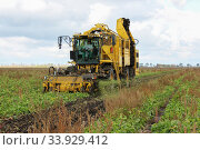 Купить «Beet harvesters in process», фото № 33929412, снято 19 октября 2012 г. (c) Nataliia Zhekova / Фотобанк Лори