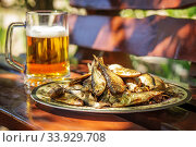 Tasty smoked herring lies on a plate with glass of cold beer. Стоковое фото, фотограф Nataliia Zhekova / Фотобанк Лори