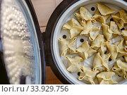 Купить «Cooking pasta, ravioli, gedza in a double boiler», фото № 33929756, снято 4 сентября 2015 г. (c) Nataliia Zhekova / Фотобанк Лори