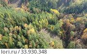 Купить «Aerial view of autumn forest. Colorful trees aerial view», видеоролик № 33930348, снято 19 октября 2019 г. (c) Яков Филимонов / Фотобанк Лори