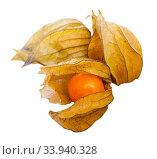 Cape gooseberry physalis. Стоковое фото, фотограф Яков Филимонов / Фотобанк Лори