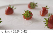 Купить «Ripe red strawberry fruit falls into the center of a plate of water with splashes and drops of water. A few berries lie on the white plate. Slow motion. Full HD video, 240fps,1080p.», видеоролик № 33940424, снято 26 июня 2020 г. (c) Ярослав Данильченко / Фотобанк Лори