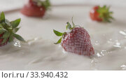 Купить «Milk splash on a ripe red strawberry fruit, which lies on a white plate with milk. Slow motion. A few berries lie on the white plate. Soft focus, close-up. Full HD video, 240fps,1080p.», видеоролик № 33940432, снято 2 июля 2020 г. (c) Ярослав Данильченко / Фотобанк Лори