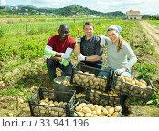 Satisfied farmers with potato harvest. Стоковое фото, фотограф Яков Филимонов / Фотобанк Лори