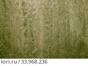 Old wall texture grunge background. Стоковое фото, фотограф Nataliia Zhekova / Фотобанк Лори