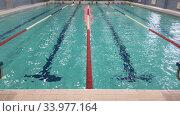 Купить «Детский спортивный бассейн на четыре дорожки, занятия по плаванию, фокус на передний план», видеоролик № 33977164, снято 19 мая 2020 г. (c) Кекяляйнен Андрей / Фотобанк Лори