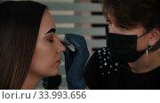 Filling in the eyebrow of young woman with tinted dark dye and brushing the brow with an eyebrow brush. Стоковое видео, видеограф Константин Шишкин / Фотобанк Лори