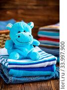 Купить «Baby clothes», фото № 33997900, снято 8 июля 2020 г. (c) age Fotostock / Фотобанк Лори