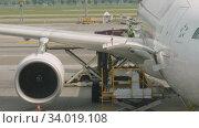 Купить «Uploading cargo onboard the aircraft», видеоролик № 34019108, снято 14 ноября 2018 г. (c) Игорь Жоров / Фотобанк Лори