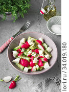 Купить «Radish, cucumber, kiwi, cheese and dill salad in a bowl on gray grunge concrete background. Seasonal Cooking, food styling.», фото № 34019180, снято 11 апреля 2019 г. (c) Nataliia Zhekova / Фотобанк Лори