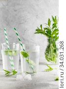 Купить «glasses of cold water with fresh mint leaves and ice cubes on grey concrete background», фото № 34031268, снято 4 июня 2019 г. (c) Nataliia Zhekova / Фотобанк Лори