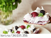 Купить «Beautiful freshly made berry meringue tart decorated with mint leaves on plate. Stunning Blackberry meringue pie still life composition. Food photography.», фото № 34031356, снято 9 февраля 2019 г. (c) Nataliia Zhekova / Фотобанк Лори