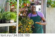 Купить «Owner of flower shop offering cumquat in pot», фото № 34038180, снято 14 февраля 2019 г. (c) Яков Филимонов / Фотобанк Лори