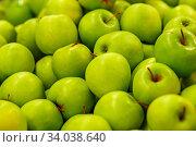 Many ripe green apples. Стоковое фото, фотограф Nataliia Zhekova / Фотобанк Лори