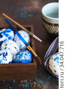 Купить «Dyed Easter eggs. Сlassic blue Easter eggs on the grey background. Blue speckled easter eggs with paint and brushes. Decorating eggs, preparing for Easter», фото № 34047716, снято 27 февраля 2020 г. (c) Nataliia Zhekova / Фотобанк Лори