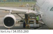 Купить «Uploading cargo onboard the aircraft», видеоролик № 34053260, снято 14 ноября 2018 г. (c) Игорь Жоров / Фотобанк Лори