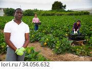 Portrait of african-american farmer. Стоковое фото, фотограф Яков Филимонов / Фотобанк Лори