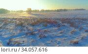 Купить «Aerial drone view of cold winter landscape with arctic field, trees covered with frost snow and morning sun rays over horizon.», видеоролик № 34057616, снято 24 июня 2019 г. (c) Александр Маркин / Фотобанк Лори
