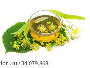 Купить «Липовый чай», фото № 34079868, снято 22 июня 2020 г. (c) Татьяна Белова / Фотобанк Лори