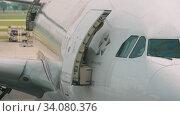 Купить «Widebody airplane before departure», видеоролик № 34080376, снято 14 ноября 2018 г. (c) Игорь Жоров / Фотобанк Лори