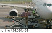 Купить «Uploading cargo onboard the aircraft», видеоролик № 34080464, снято 14 ноября 2018 г. (c) Игорь Жоров / Фотобанк Лори