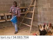 Man farmer with bucket feeding chickens at chicken-house. Стоковое фото, фотограф Яков Филимонов / Фотобанк Лори