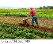 Купить «Mann bei der Landbearbeitung», фото № 34086740, снято 3 июля 2020 г. (c) easy Fotostock / Фотобанк Лори
