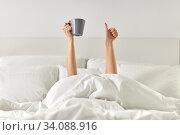 Купить «woman with coffee lying in bed showing thumbs up», фото № 34088916, снято 22 января 2020 г. (c) Syda Productions / Фотобанк Лори