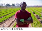 Confident aframerican farmer with arms crossed on farm field. Стоковое фото, фотограф Яков Филимонов / Фотобанк Лори