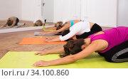 Купить «Women pull their backs on yoga training in the studio», фото № 34100860, снято 21 сентября 2019 г. (c) Яков Филимонов / Фотобанк Лори