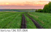 Купить «Scenic view over the road along the forest. Fantastic bright sky with beautiful clouds at sunset day.», фото № 34101064, снято 13 мая 2020 г. (c) Акиньшин Владимир / Фотобанк Лори
