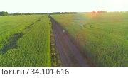 Купить «Aerial view on young boy, that rides a bicycle thru a wheat grass field on the old rural road. Sunlight and beams.», видеоролик № 34101616, снято 18 мая 2019 г. (c) Александр Маркин / Фотобанк Лори