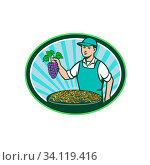Illustration of a farm boy wearing hat holding grapes with bowl of raisins set inside oval shape with sunburst in the background done in retro style. Стоковое фото, фотограф Zoonar.com/patrimonio designs limited / easy Fotostock / Фотобанк Лори