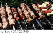Купить «Barbecue meat on skewers, beautifully browned meat on the grill. A pork meat on the grill in the spring garden. Cooking shashlik on the mangal in nature. Shashlik cooking on the coals», видеоролик № 34126940, снято 30 июня 2020 г. (c) Алексей Кузнецов / Фотобанк Лори