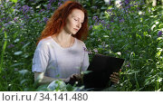 Redhead woman work on laptop computer among flowers in a city park, a light wind blows through her hair. Стоковое видео, видеограф Алексей Кузнецов / Фотобанк Лори